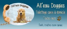 All'eau Doggies Solliès Toucas