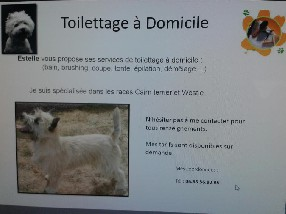 ESTELLE TOILETTAGE Ablis