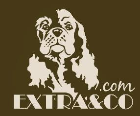 EXTRA AND CO - Toilettage à Domicile ou en salon La Garde