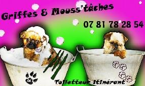 Griffes & mouss'tâches Lullin