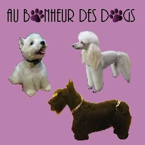Au Bonheur des Dogs Bourges