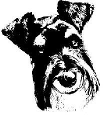 logo Doggy Coiff'