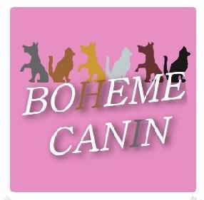 Bohème Canin Toul