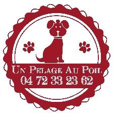 Salon de toilettage - Un Pelage Au Poil Lyon