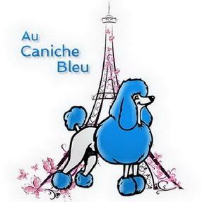 Au Caniche Bleu Le Passage