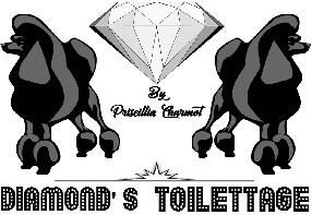 DIAMOND'S TOILETTAGE Thonon les Bains