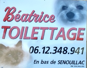beatrice TOILETTAGE Gaillac