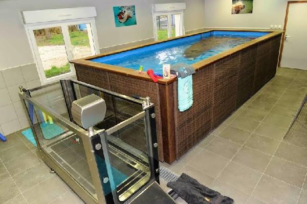 Un espace de remise en forme<br /> Préparation sportive et activités plaisirs<br /> Le complexe est équipé d'un tapis immergé et d'un bassin de nage chauffé avec nage contre-courant et plage de repos, spécialement conçu pour les chiens. Nous nous servons des bienfaits de l'eau.<br />