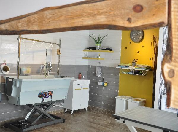 Salon Dog SigNature, espace toilettage